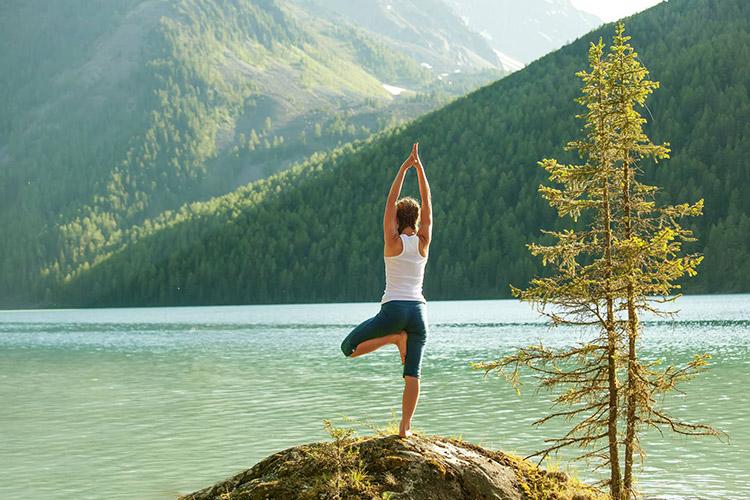Tập yoga để giải độc cơ thể
